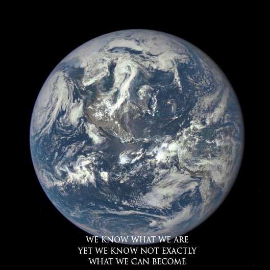 earth haiku