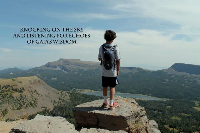 gaia wisdom